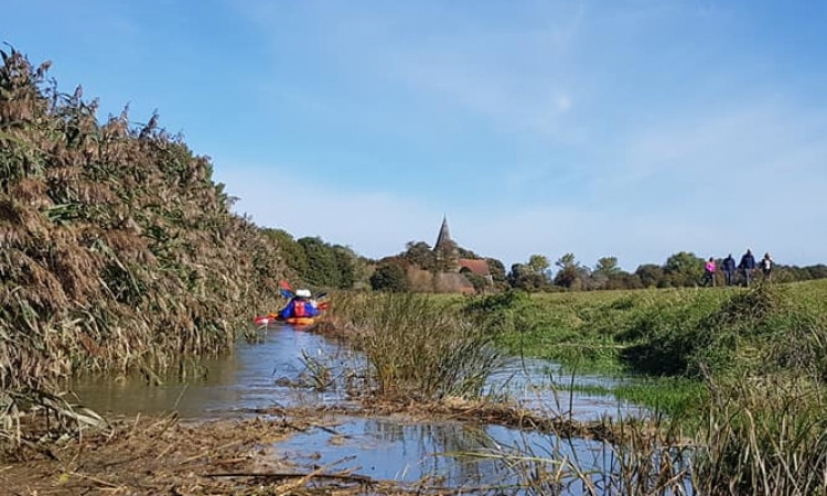 Cuckmere River Trip: Exceat to Alfriston